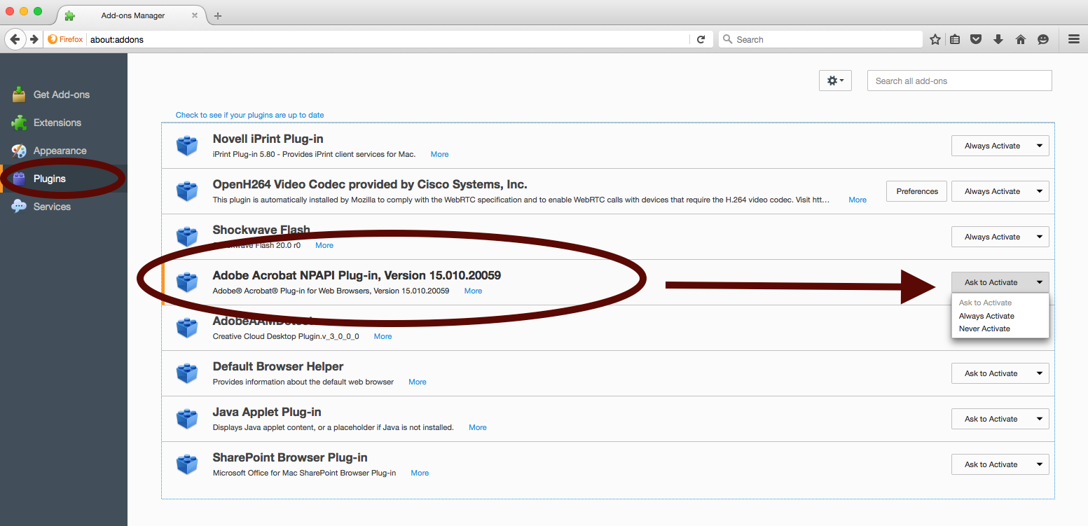 plugins npapi ask to activate